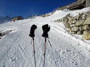 ski gloves on poles
