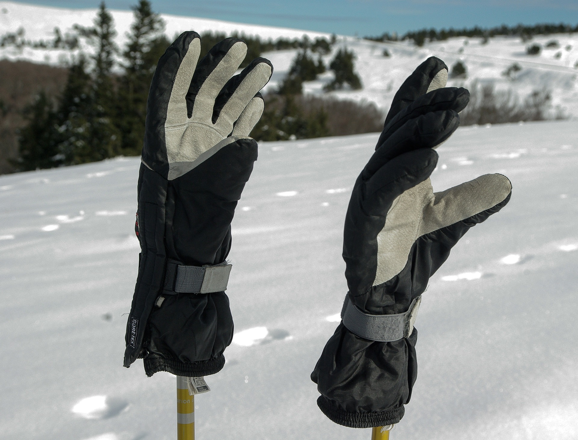 Gloves on ski poles