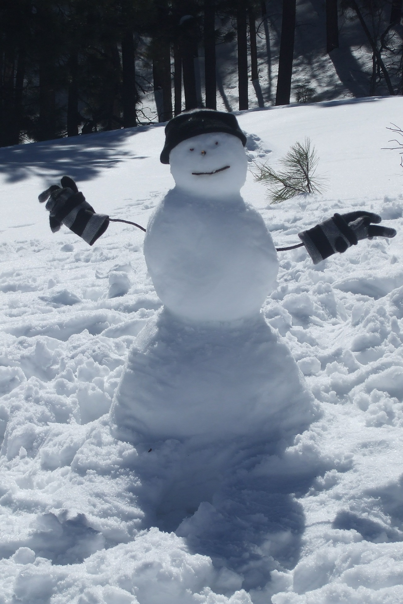 Snowman with gloves and hat