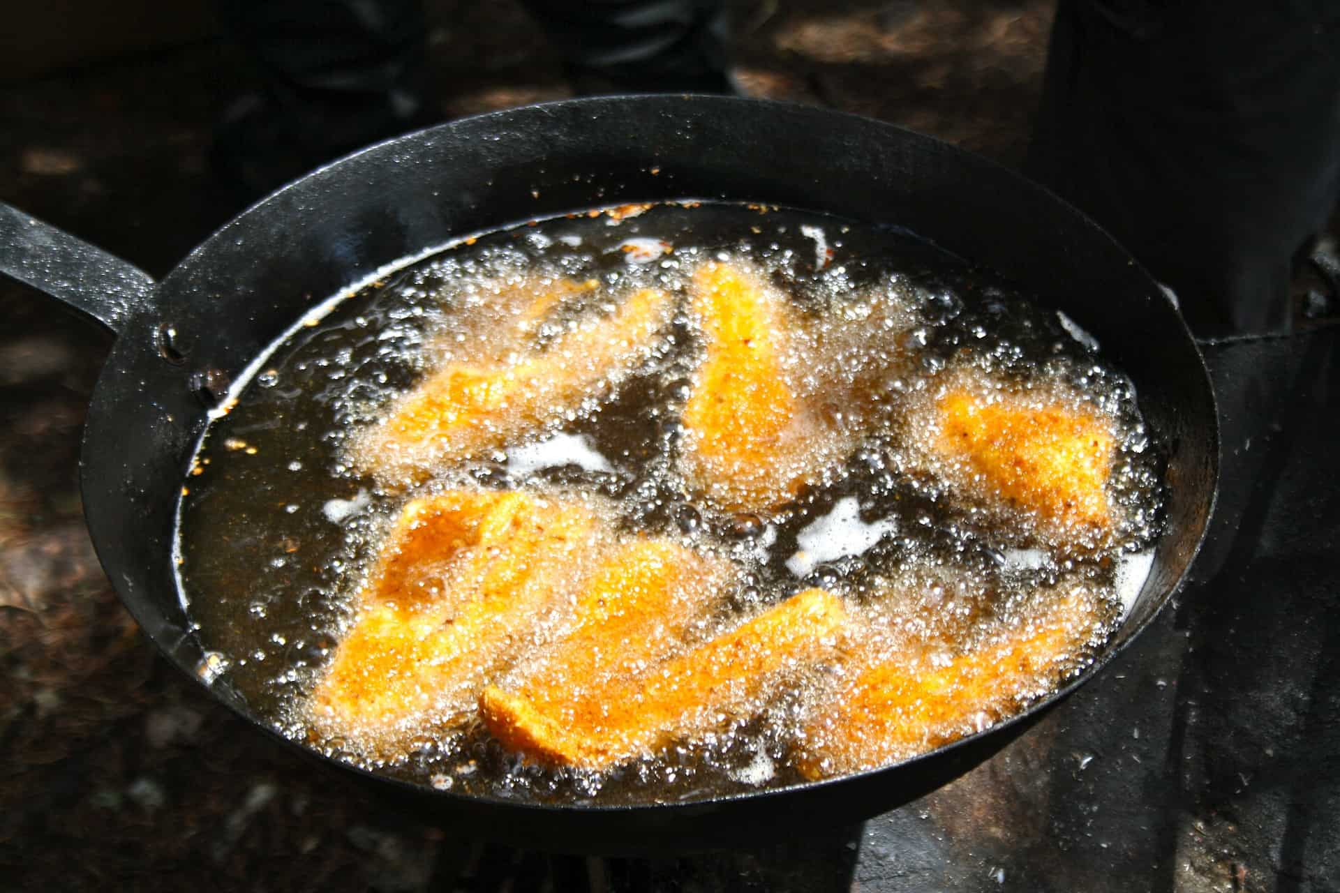 Walleye frying in pan